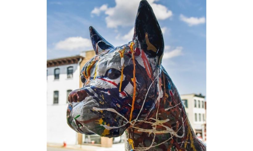 Boonton Arts Dog Days of Summer & Some Cool Cats!