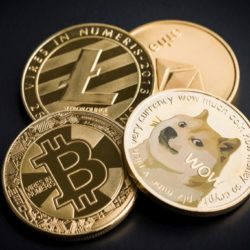 Donate cryptocurrency to help animals in need
